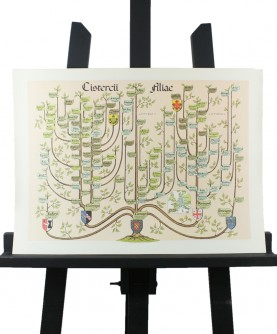 Family tree of the girls of Citeaux
