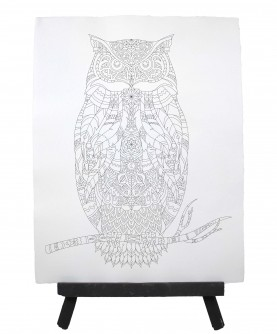 Drawing ready to paint OWL
