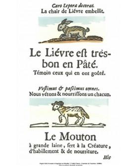 """The """"Rôti-Cochons"""" - """"Le lièvre et le mouton"""""""