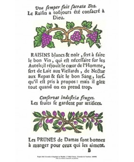 "Les ""Rôti-Cochons"" - Le raisin"