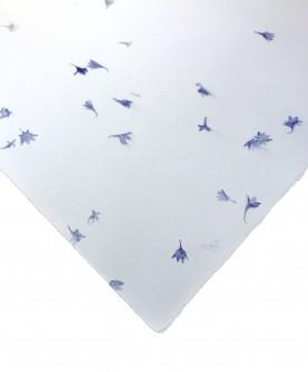 Papier chiffon coton inclusions fleurs bleues - petits...
