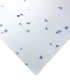 Cotton rag paper with blue flower inclusions - large size
