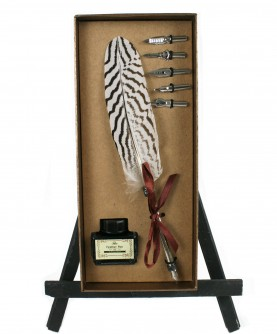 Feather box 'gold'